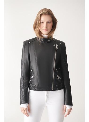 Black Noble Tını Siyah Biker Deri Ceket Siyah